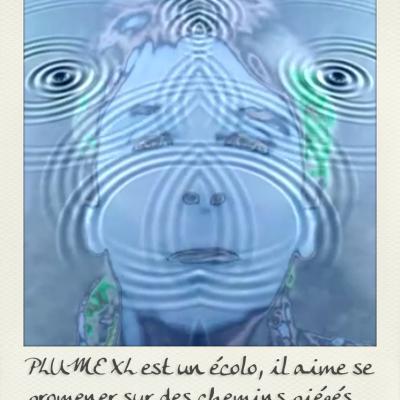 PLUME XL EST UN ÉCOLO.